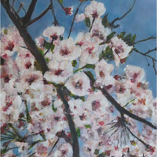 The Cherry Blossoms of Busan – acrylic, 45×40 cm (2014)
