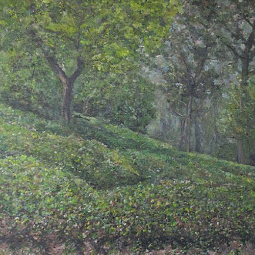 Tea plantation at Haenam – acrylic, 40×50 cm (2014)