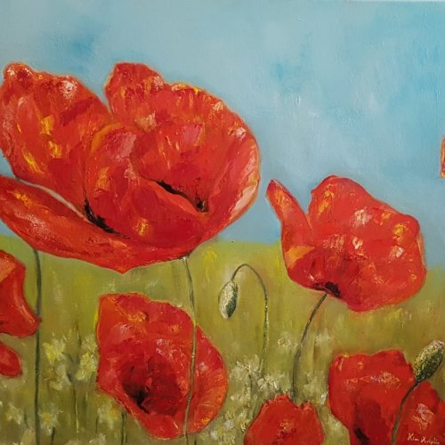 Poppies in June – oil, 80×70 cm (2017)